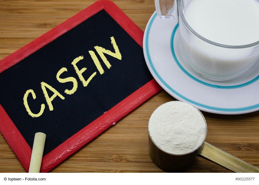 Casein Test Vergleich 2016